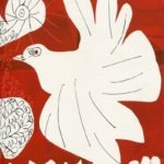 colombe, encre, 25x32 cm